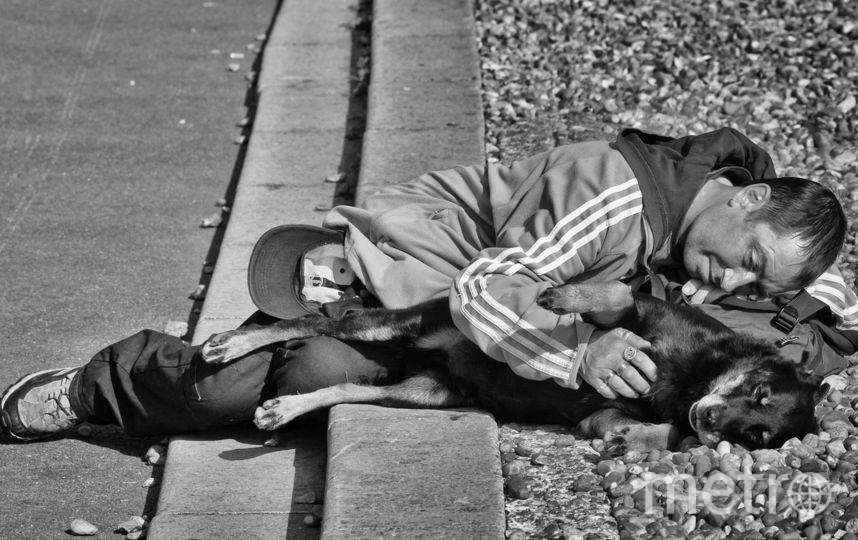 Мужчина с собачкой. Фото Игорь Верещагин