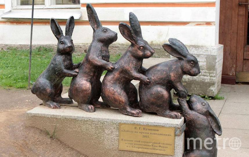 Музей истории Санкт-Петербурга разыскивает зайцев