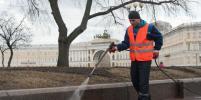В Петербурге улицы начали мыть с шампунем