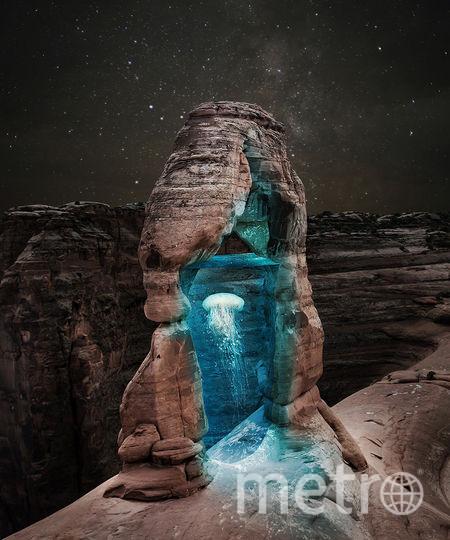 Медуза в камне. Фото предоставил Хусейн Сахин
