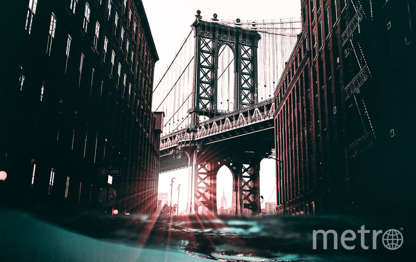 Черепаха под Манхэттенским мостом. Фото предоставил Хусейн Сахин