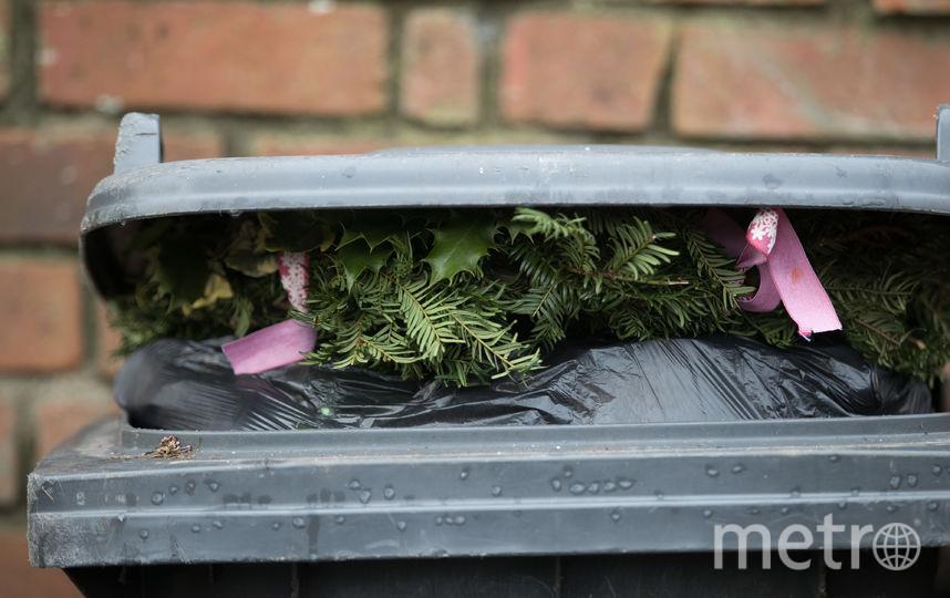 Раздельный сбор мусора. Фото Getty