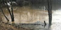 Эколог о разливе нефти в Домодедово: Авария не представляет угрозы для Москвы
