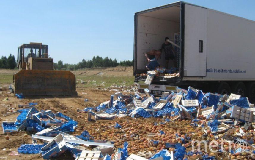 Уничтожение санкционной продукции. Фото РИА Новости