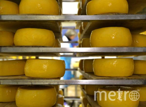 Сыр. Фото РИА Новости