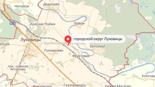 Под Москвой вДТП погибло трое детей