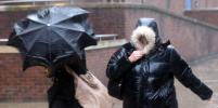 Погода в Петербурге: штормовой ветер не утихнет до вечера понедельника