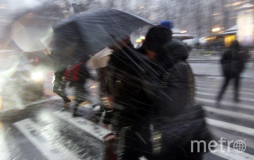 В Петербурге неделя начнется с ветра и гололедицы. Фото Getty