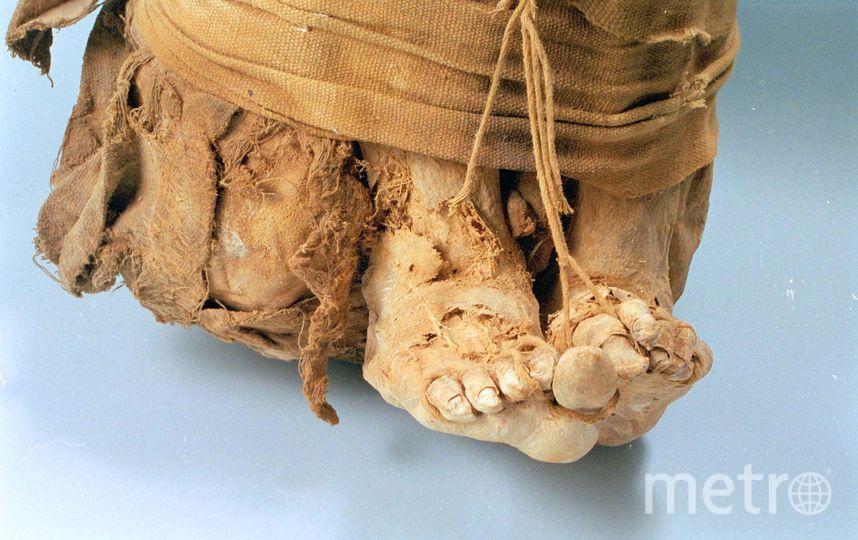 Мумия. Архивное фото. Фото Getty