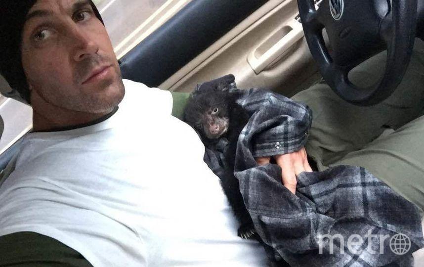 Житель америки спас умирающего медвежонка