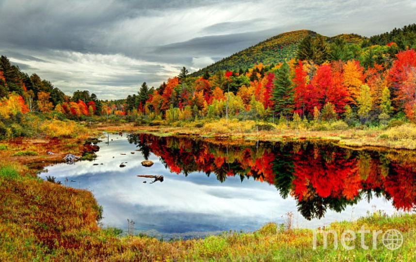 Штат Нью-Гэмпшир. Фото Getty