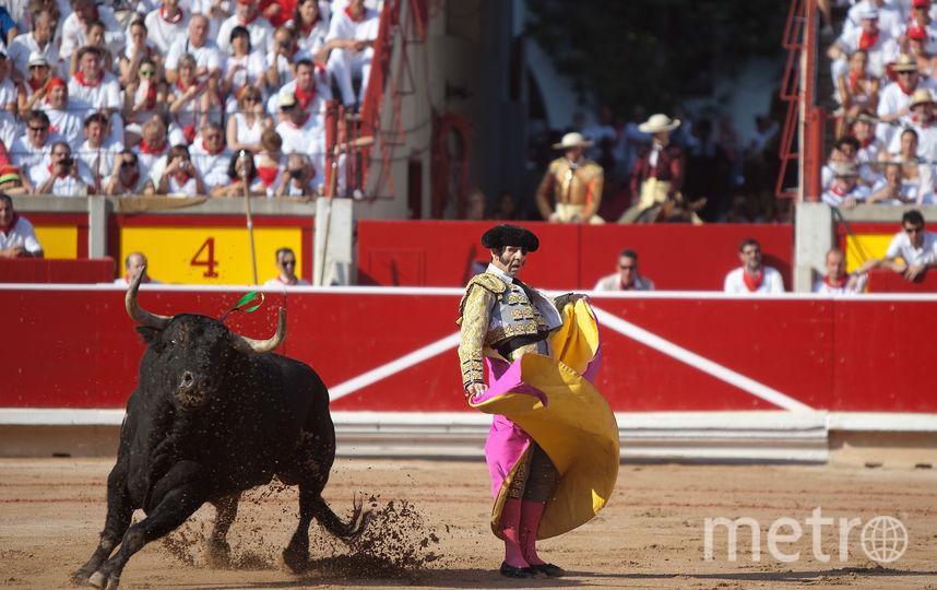 Матадор дразнит быка во время корриды. Фото Getty
