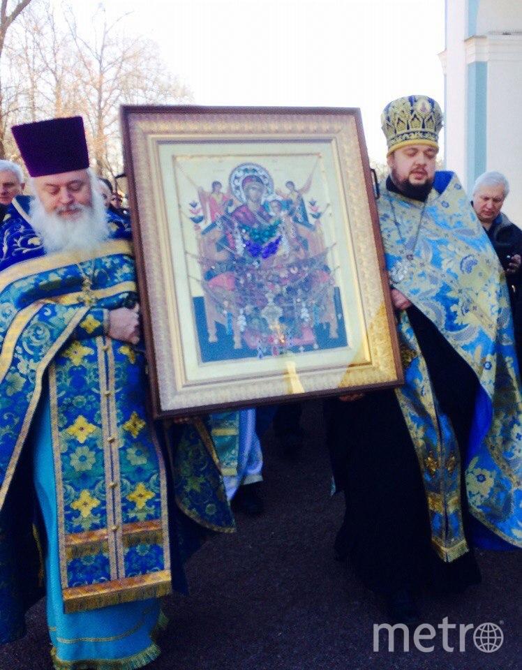 Встреча святынь | приход сампсониевского собора | группа vk.com.