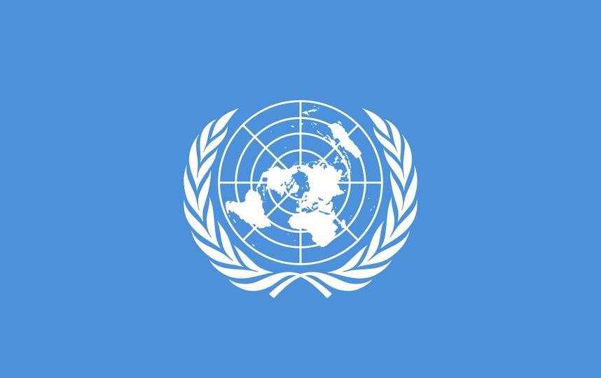 Флаг ООН. Фото wikipedia.org.