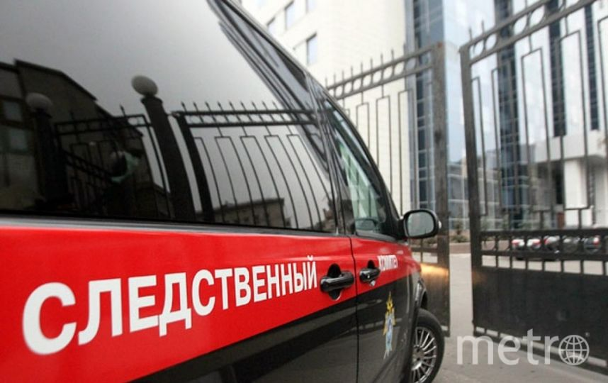 ВСледкоме заявили, что вСанкт-Петербурге задержали сообщников террористов