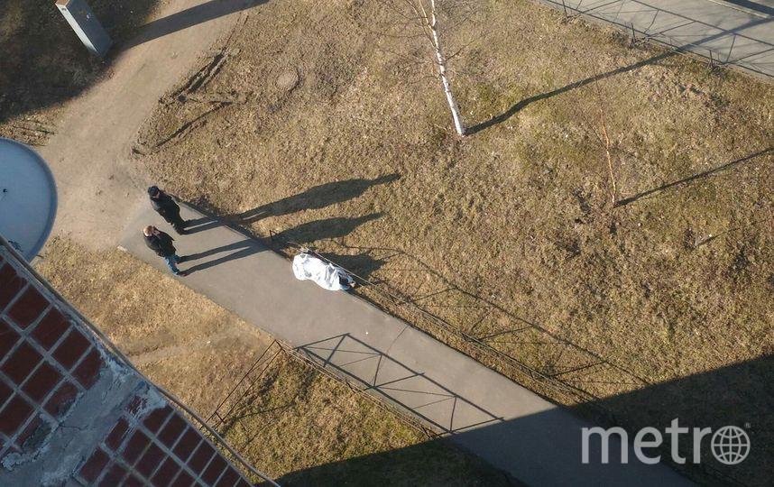 Очевидцы: В Петербурге из окна выпала девушка. Фото «ДТП и ЧП | Санкт-Петербург», vk.com