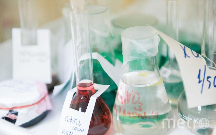 """Наноматериал, защищающий плобы от кариеса. Фото Предоставлено пресс-службой """"МИСиС"""""""