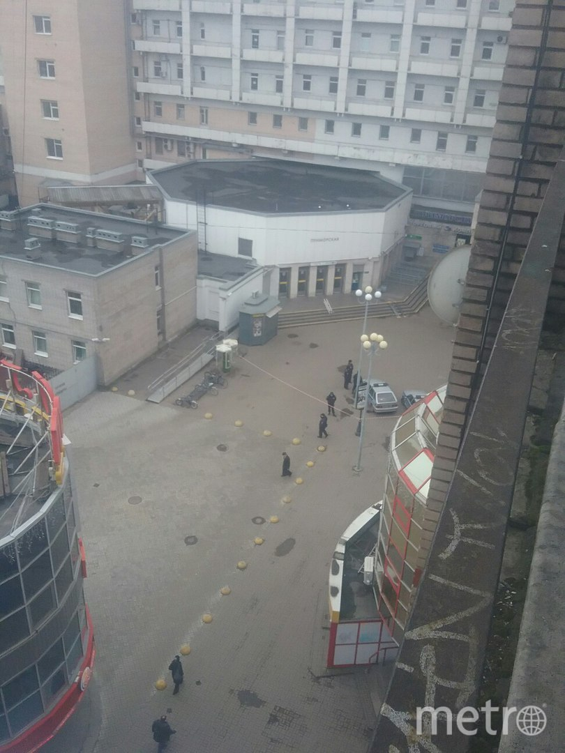 На «Приморской» задержан мужчина с муляжом гранаты. Фото «ДТП и ЧП | Санкт-Петербург», vk.com