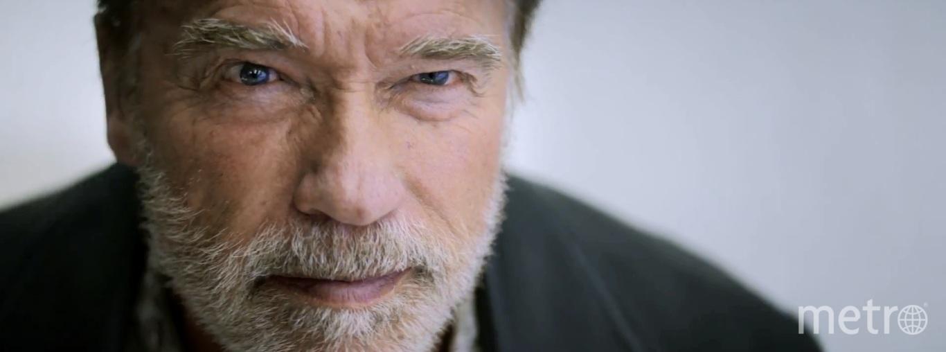Два года Арнольд Шварценеггер не появлялся на экране. Фото IMDB, Emmett/Furla Films.