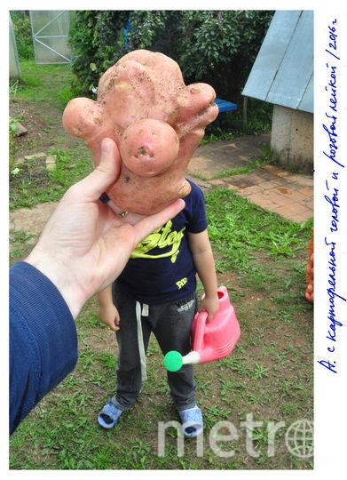Артём с картофельной головой и розовой лейкой. Фото Игорь Самолёт