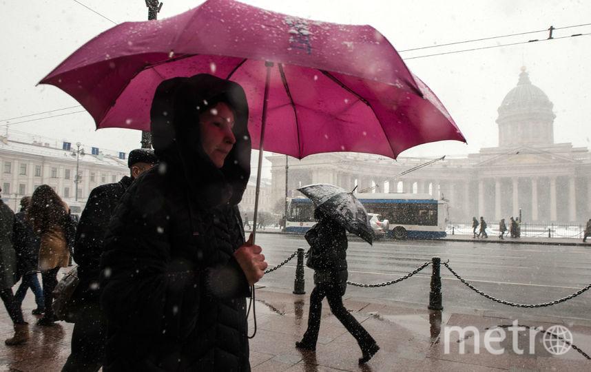"""Снег в Петербурге идет с утра 13 апреля. Фото Святослав Акимов, """"Metro"""""""