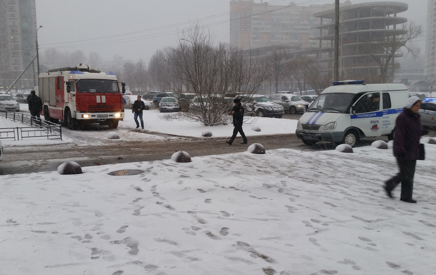 Фото: vk.com/spb_today, Кирилл Збитнев.