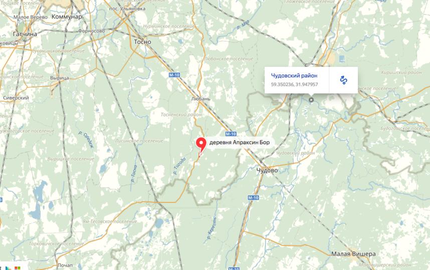 ДТП произошло в Тосненском районе Ленобласти утром 14 апреля. Фото Яндекс.Карты.