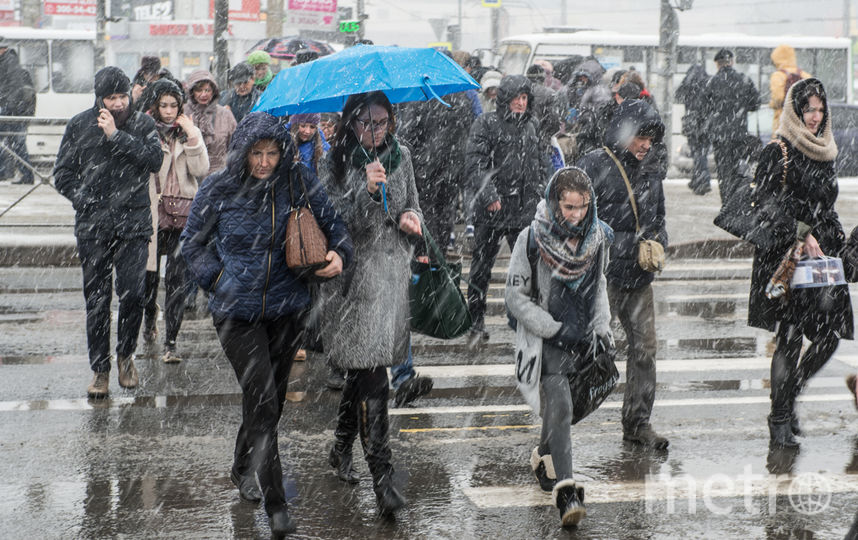 "Снегопад в Петербурге 13 апреля. Фото Святослав Акимов., ""Metro"""