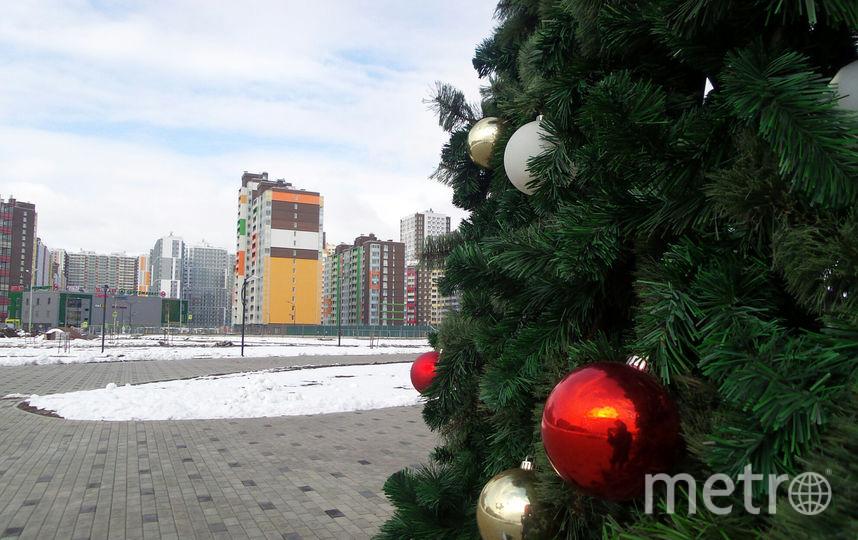 """Ёлка в Кудрово. Фото Анна Лутченкова, """"Metro"""""""