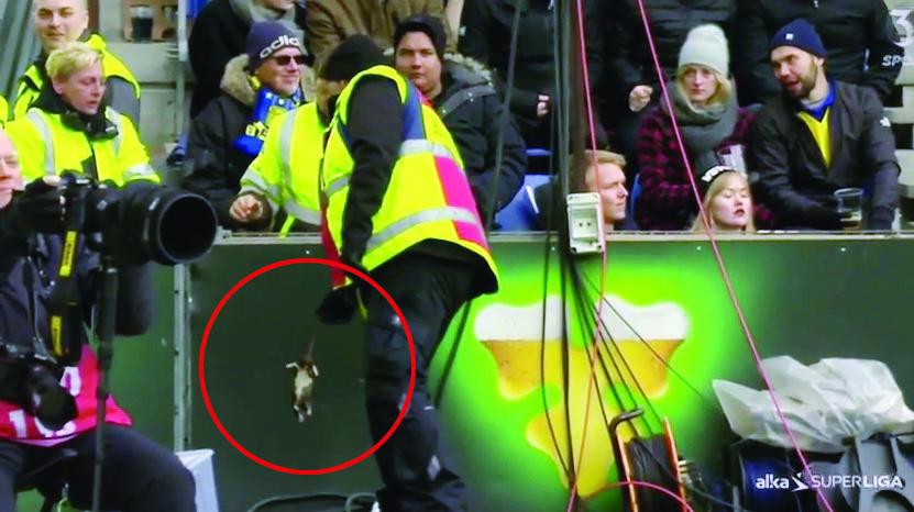 Инцидент произошёл во время матча чемпионата Дании. Фото  Скриншот Youtube