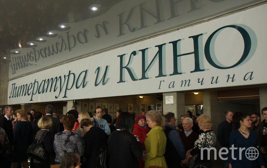Кинофестиваль в Гатчине. Фото Михаил Садчиков-младший