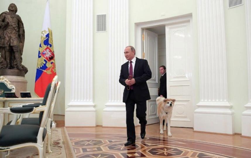 Путин и пес Юмэ.