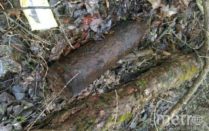 Рядом сфонтанами вПетродворце отыскали военный снаряд