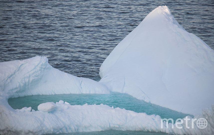 Дрейф айсбергов начался у берегов Канады. Фото Getty