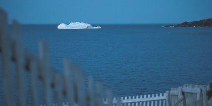 Гигантские айсберги появились у берегов Канады: впечатляющие фото